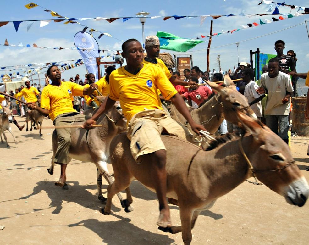 Donkey Race at Lamu Cultural Festival