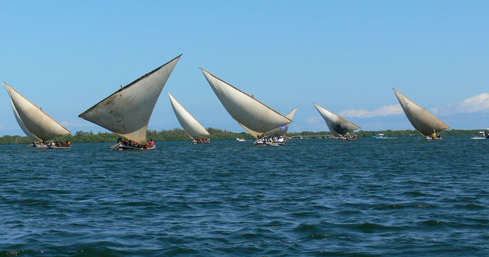Dhows at the Coast