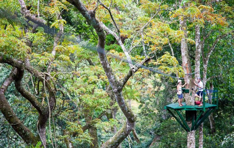Zip lining in Lugazi: pic source - Ecotours Uganda