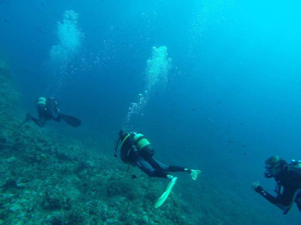 Scuba Diving at Mombasa Marine Park